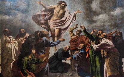Studio ESSECI - SAN TEONISTO. Il ritorno dei dipinti trafugati da Napoleone 2